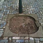 Buurt Uitvinderswijk Beeklaan Columbusstraat Meer groen? Zelf doen!
