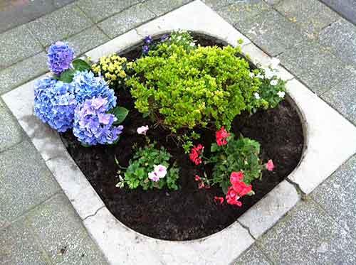 wie tuinieren