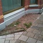 Samen tuinieren Uitvinderswijk Hoek Marconi-Galileistraat Meer groen? Zelf doen!