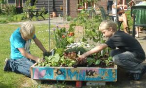 kinderen / Foto van de site: De Makkelijke Moestuin