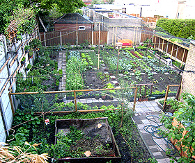 geen eigen tuin