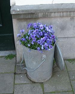 Plantenbak Hergebruik van een vuilnisbak. Foto: Wim Schutten.