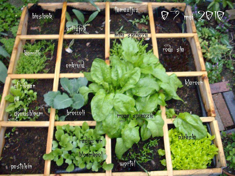Moestuin Zelf Maken : Mini moestuinen meer groen zelf doen