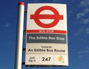 Eetbare bushalte