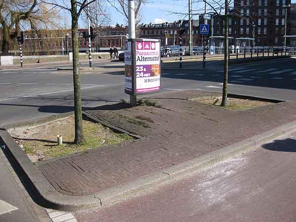 Boomspiegels-hoek-LvM-Regentesselaan