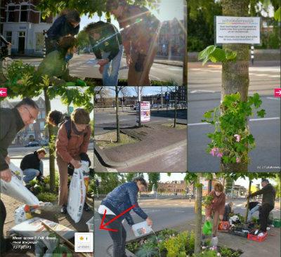 Groene buurtproject