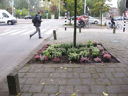 Regentesselaan-derde-tuin